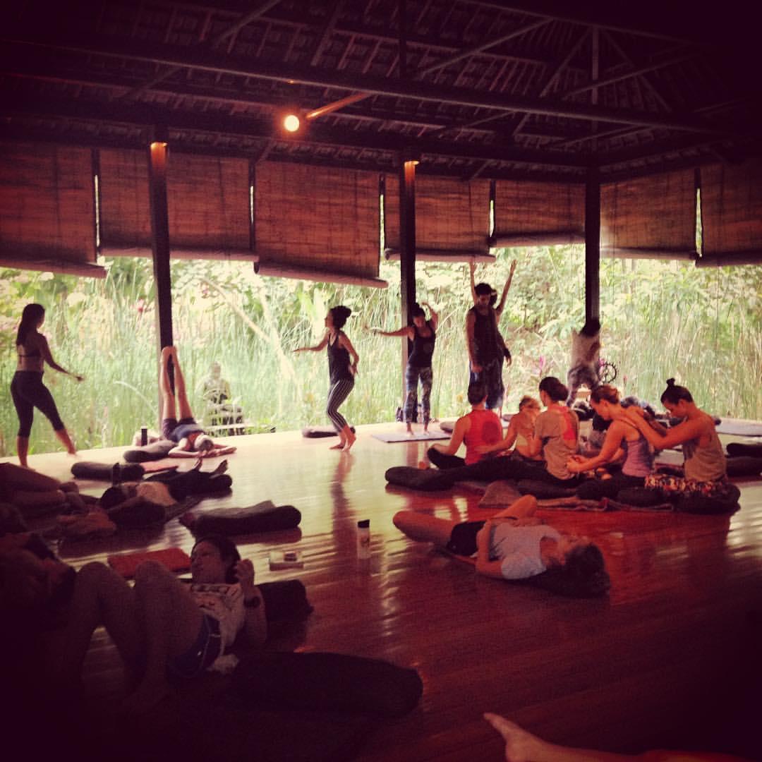 High Vibe Yoga freedom